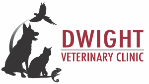 Dwight Veterinary Clinic